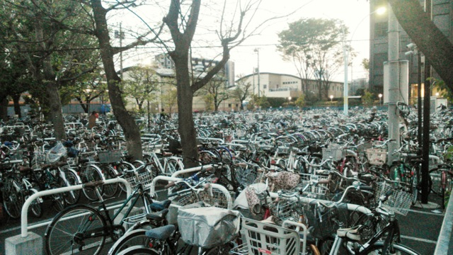 Bicycle parking lots
